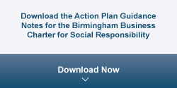 Download Action Plan Guidance
